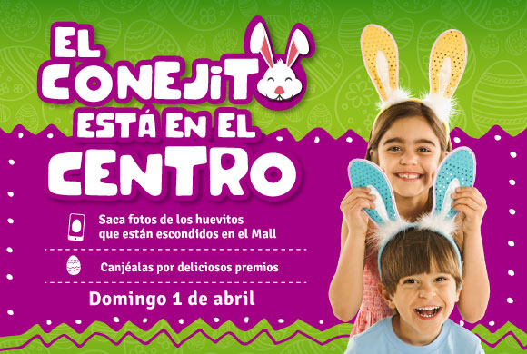 El conejito está en Mall Paseo Viña Centro